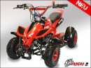 49cc mini QUAD DRAGON II