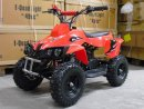 Quad Bike 49cc - Rhino2